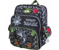 Рюкзак-ранец  DeLune 55-05 школьный ортопедический серый с зеленым